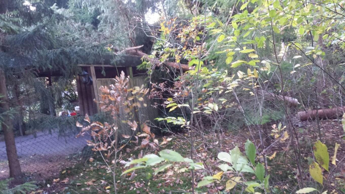 17-10-29-TH-Unwetter-Bild(12)