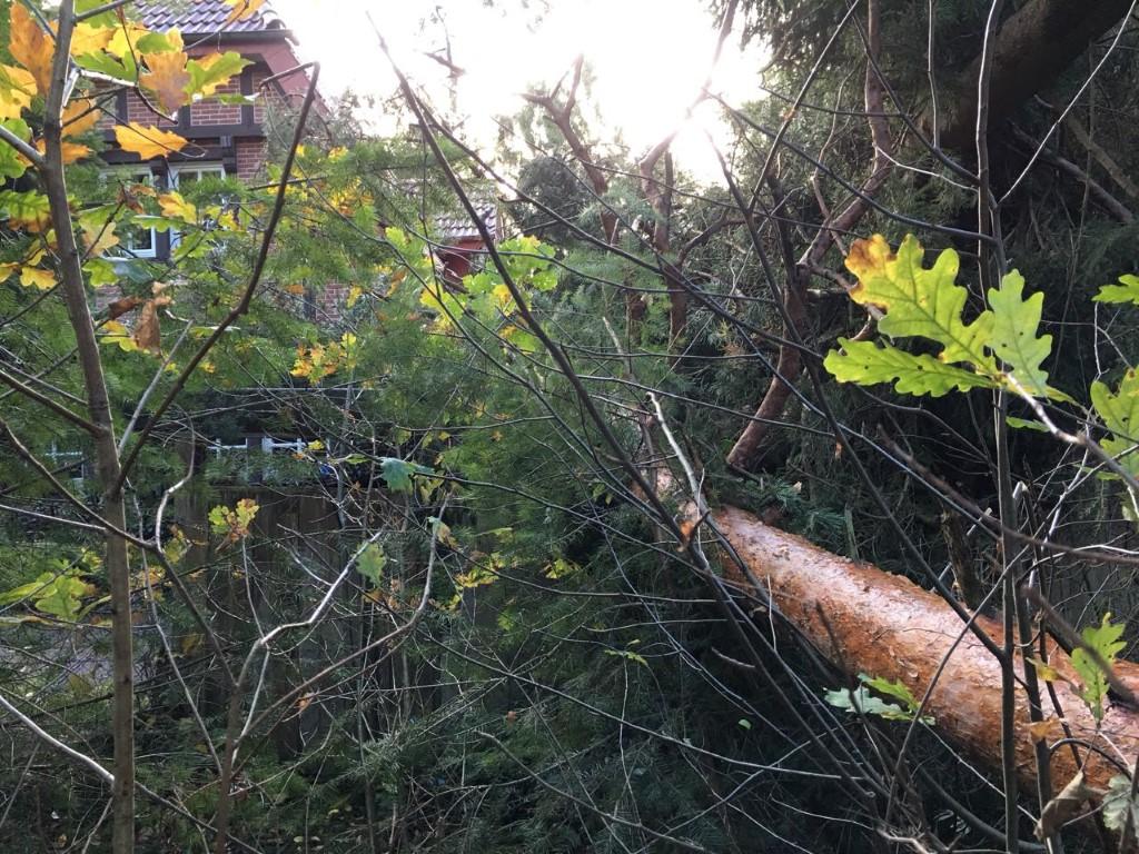 17-10-29-TH-Unwetter-Bild(14)